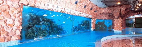 海底温泉「お魚風呂」